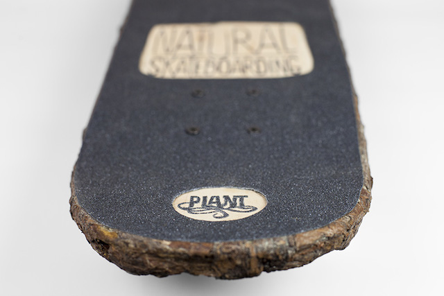 Monsieur Plant de retour avec le «Natural Skateboarding »
