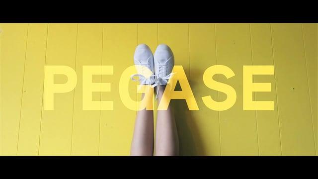 Well Bell, le nouveau clip du nantais Pegase