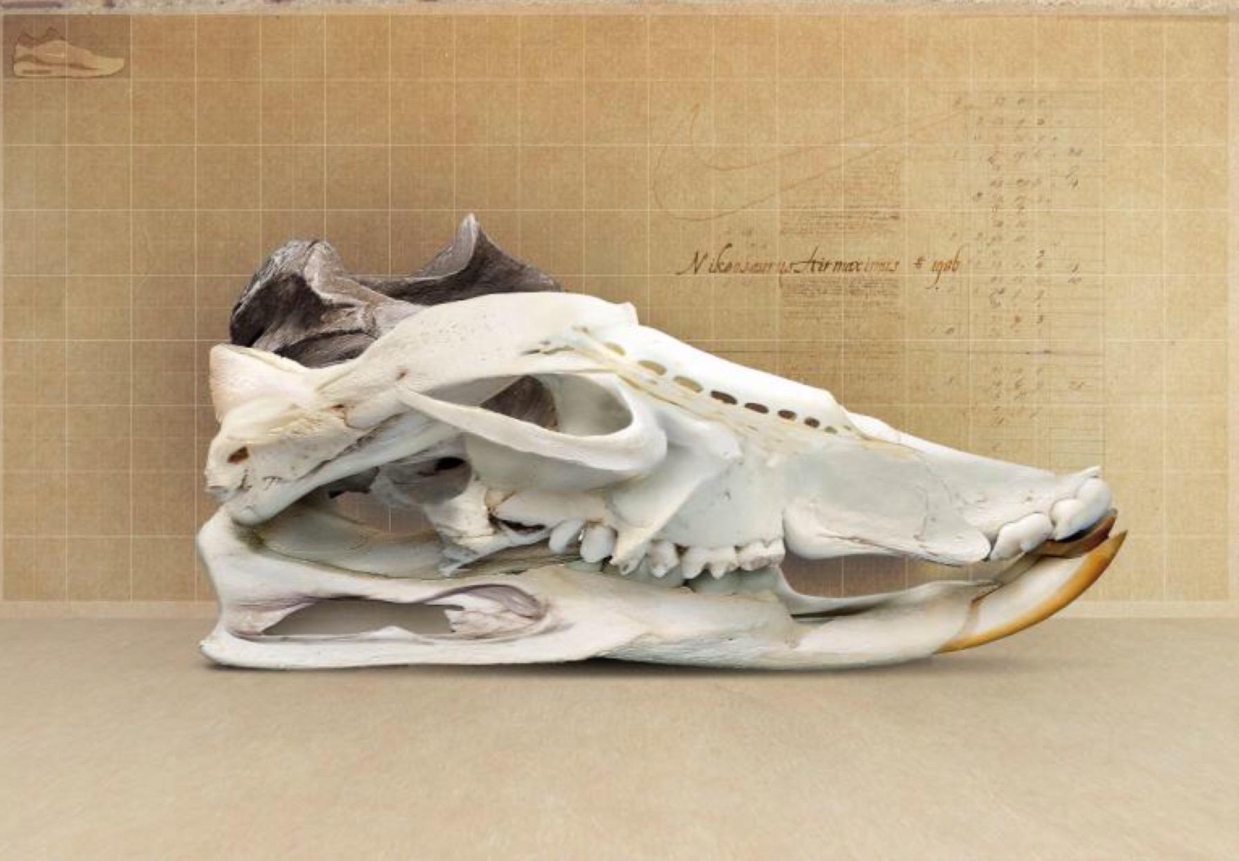 «Sneakers, objets de désir» – L'expo qui dégomme